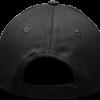 Black_Hat_Back_Profile