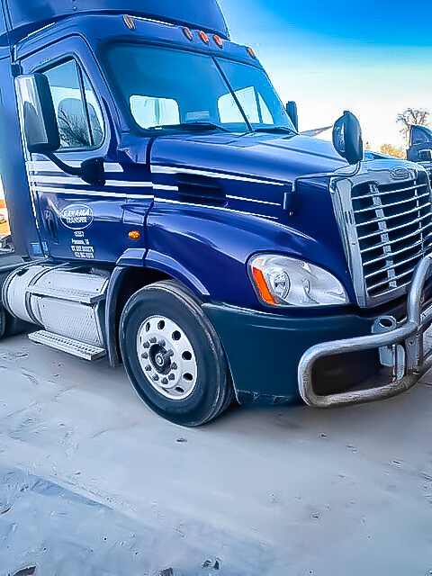 Freightliner LT Deer Hit